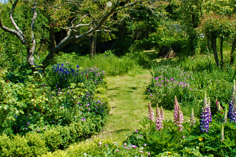Herbaceous Borders and Orchard